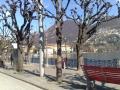 Lugano boulevard