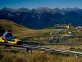 rodelen op de Alp